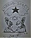 Národ sobě - vývin židomarxisty