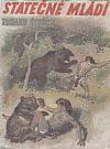 Statečné mládí - Příběhy hochů z pravěké vlasti
