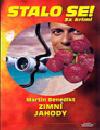 Zimní jahody
