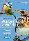 Vtáky našich záhrad v životnej veľkosti
