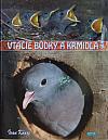 Vtáčie búdky a kŕmidlá