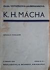 K.H. Mácha - Několik pohledů