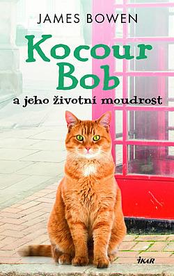 Kocour Bob a jeho životní moudrost obálka knihy