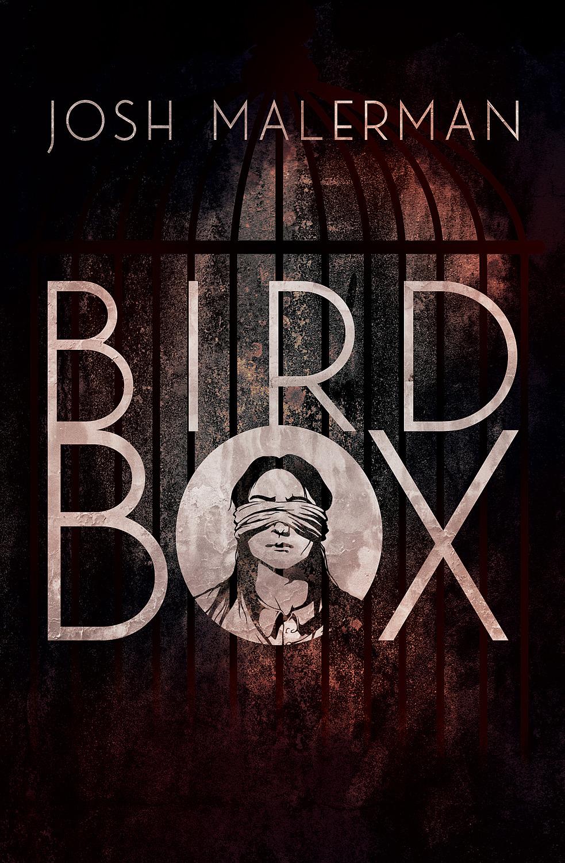 Výsledek obrázku pro bird box kniha