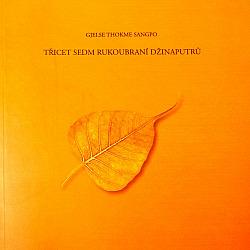 Třicet sedm rukoubraní Džinaputrů obálka knihy