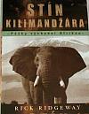 Stín Kilimandžára