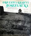 Přívětivá krajina Josefa Suka