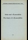Sedm statí o Komenském, Dva dopisy J.A. Komenského