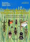 Blattaria, Mantodea, Orthoptera & Dermaptera České a Slovenské republiky - Ilustrovaný klíč