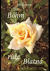 Böhm růže Blatná