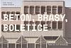Beton, Břasy, Boletice: Praha na vlně brutalismu