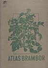 Atlas brambor