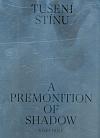 Tušení stínu / A Premonition of Shadow