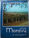 Zahrada Moravy: Okres Uherské Hradiště ve fotografii