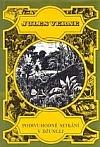 Podivuhodné setkání v džungli obálka knihy
