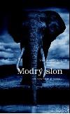 Modrý slon - O čem všem je láska....