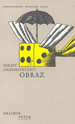Nikdy nedokončený obraz obálka knihy