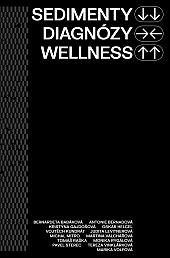 Sedimenty diagnózy wellness