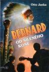 Bernard od šíleného koně
