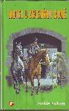 Hotel U zeleného koně