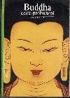 Buddha - cesta probuzení