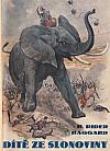 Dítě ze slonoviny