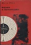 Blázen a černovláska obálka knihy