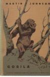 Gorila obálka knihy