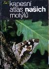 Kapesní atlas našich motýlů