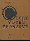 Čechy v době bronzové