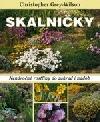 Skalničky: nenáročné rostliny do zahrad i nádob