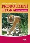 Probouzení tygra