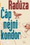 Čáp nejni kondor