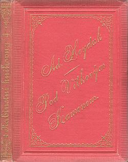 Pod Vítkovým kamenem obálka knihy