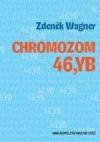 Chromozom 46,YB