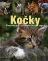 Kočky - Elegantní lovci na sametových tlapkách obálka knihy