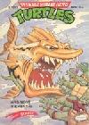 Teenage Mutant Hero Turtles #03