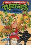 Teenage Mutant Hero Turtles #10