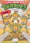 Teenage Mutant Hero Turtles #14