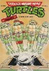 Teenage Mutant Hero Turtles #15