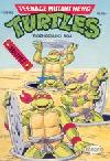 Teenage Mutant Hero Turtles #16