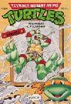Teenage Mutant Hero Turtles #19