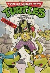 Teenage Mutant Hero Turtles #21