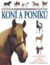 Encyklopedie koní a poníků obálka knihy
