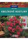 Kbelíkové rostliny - Výběr, pěstování, přezimování