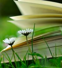 10 právě čtených knih podle uživatelů Databáze (květen)