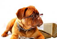 10 právě čtených knih podle uživatelů Databáze (červen)